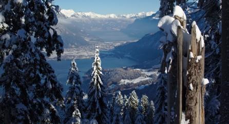 Im Winter unterzutauchen ist ein einzigartiges Erlebnis. © Marco Beirer